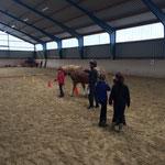 Prüfung - Pferd führen