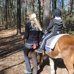 Geführtes Reiten im Wald