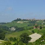 Mitten im Weingebiet - Barolo