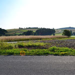 Im Hügelland