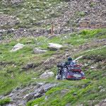 Trike am Col de la Cayolle