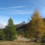 Herbst in Südtirol.