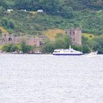 Urquart Castle vom gegenüberliegenden Ufer