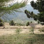 Blick vom Monte Stino ins Tal