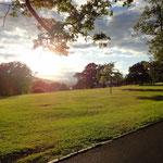Park in Balloch