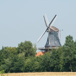 Westeraccumer Mühle in Dornum
