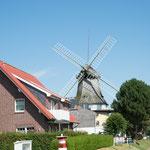 Mühle Carolinensiel in Carolinensiel