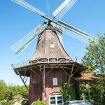 Tjücher Mühle in Marienhafe