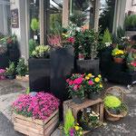 Devanture fleuri Boutique Sabrina Maurel Rodez