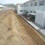 頴娃中学校 校内緑化