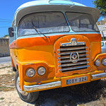Old Bedfort bus in Malta (Malta)