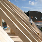 TISCHER Tischlerei: NUR-HOLZ-Haus Dachstuhl