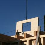 Die Montage der NUR-HOLZ-Wände beginnt - TISCHER Tischlerei + Holzbau