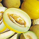 Нажмите, чтобы увеличить таманские арбузы и дыни, их сорта