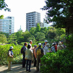 安田庭園1