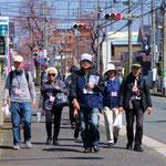 新桜ケ丘の桜並木を闊歩 かっこいい!