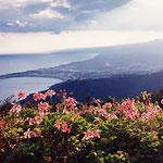 シチリア島・タオルミナ・H.VillaDucale・景色