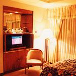 北京・王府飯店・TV