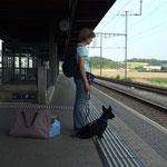Hitchcock wartet auf den Zug