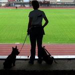 Der erste Blick ins leere Stadion