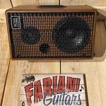 Acus Bandmate 100/ Akustikmonitor, Gitarre, Vocals