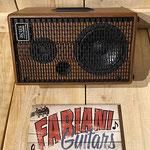 Acus Bandmate 100/ Akustikmonitor, Gitarre, Vocals, Musik Fabiani Guitars 75365 Calw, Nagold, Freudenstadt, Rottenburg, Stuttgart, Pforzheim, Karlsruhe, Baden Baden