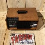 Akustikmonitor, Keyboard, Digitalpiano, Vocals, Gesang, Musik Fabiani Guitars 75365 Calw, Nagold, Freudenstadt, Rottenburg, Stuttgart, Pforzheim, Karlsruhe, Baden Baden