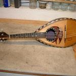 Reparatur Mandolinen, Waldzithern, Zithern, Fabiani Guitars 75365 Calw, Nagold, Herrenberg