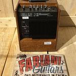 Akustikverstärker 50 Watt, Musik Fabiani Guitars 75365 Calw, Nagold, Freudenstadt, Rottenburg, Stuttgart, Pforzheim, Karlsruhe, Baden Baden