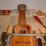 Fabiani Guitars 75365 Calw, Reparatur Gitarrhals, Basshals, Konzertgitarre