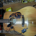 Tuning & Reparaturen E- Gitarren aller Art, Ibanez, Tokai, Faber, Hagström, FGN und Gibson Les Paul, Epiphone, Fender Squier, Musikhaus Calw