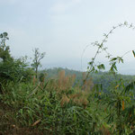 Landschaft unterwegs