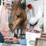 Heut ist Kamelfleisch im Angebot