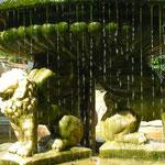 Brunnen im Schloßhof