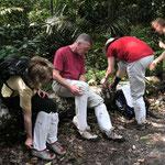 Wanderung im Park und Gameschenschutz gegen Blutegel