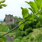 Burgruine Schauenburg