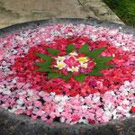 Trog mit Blüten