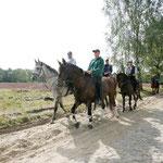 Der Naturpark Lüneburger Heide bietet 18 bis 20 ausgeschilderte Routen für Pferd und Reiter...