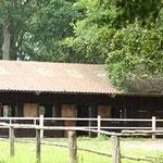 ... Pferdeboxen mit SIcht auf den Hof und ins Grüne!