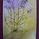 Nr 52, lila Gräser, Aquarell, 24 * 32 cm