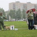 ЛЮ ВЫСТАВКИ - КОРОЛЕВСКАЯ ЗАБАВА СКАЙ ГРЕЙТ ВИННЕР