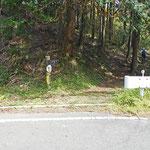 自鑑水へは、白銀林道を横断します。間伐をしている林の中を10分ぐらい歩くと…