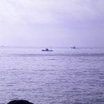 漁船が出ています。湯河原には福浦漁港があり、朝とれた魚を出す食堂もあります。