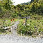大石ヶ平に出ました。ここからスタート地点の幕山公園まで、1500mの林道歩きです。