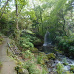 渓流沿いの遊歩道があります。