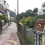 万葉公園からも千歳川沿いに遊歩道があります。この川の右は静岡との県境で熱海市です。