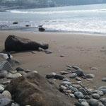 吉浜海岸です。砂と岩が組み合わさり、新崎川の河口もあります。