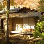 壺中という茶室。茶碗は「峰紅葉(五島慶太氏が好んだ)」を模したもので、「みかん最中」を頂きました。