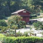これは、みかん畑の作業小屋です。 渋い赤が素敵です。