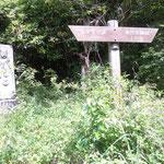 しとどの窟から幕山(まくやま)までハイキングコースがあります。あまり使われていない山道でした。
